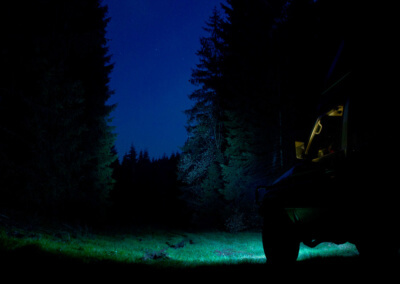 Thuringian forest by night