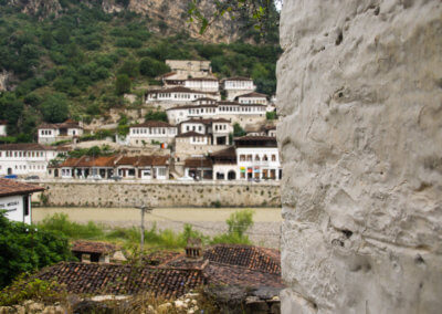 Berat from a distance